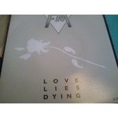 FM 7´´ LOVE LIES DYING
