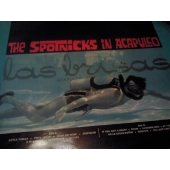 THE SPOTNICKS IN ACAPULCO